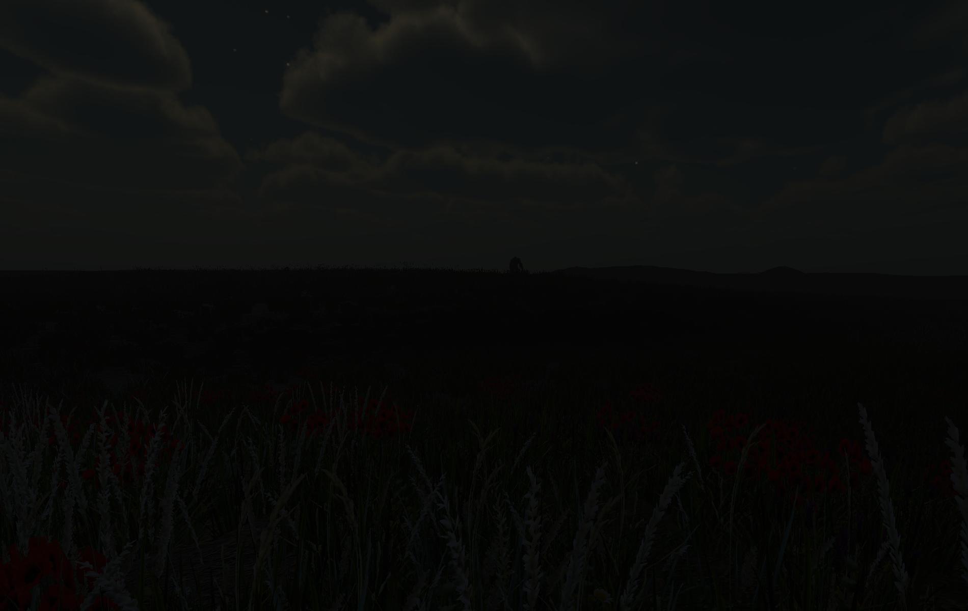 Night view of far away creature