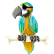 parrot large