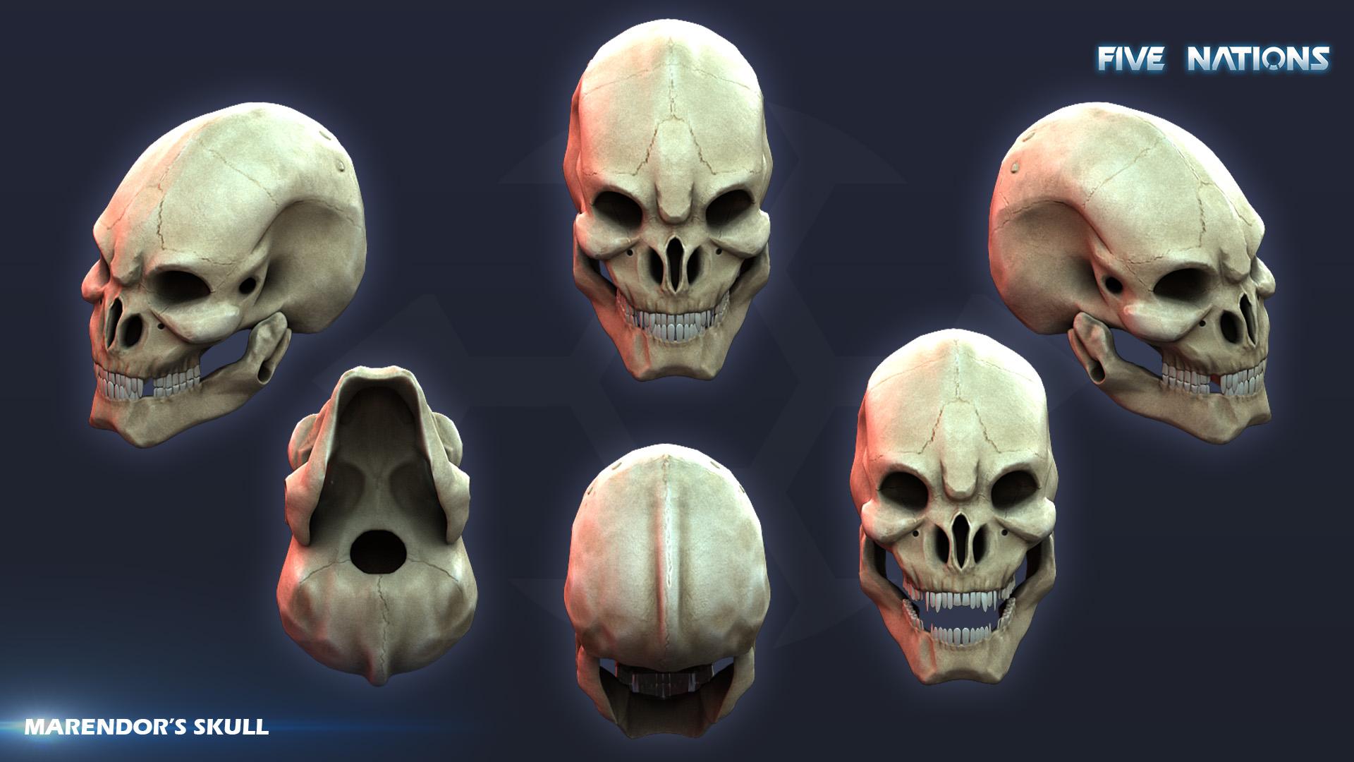 Marendors skull