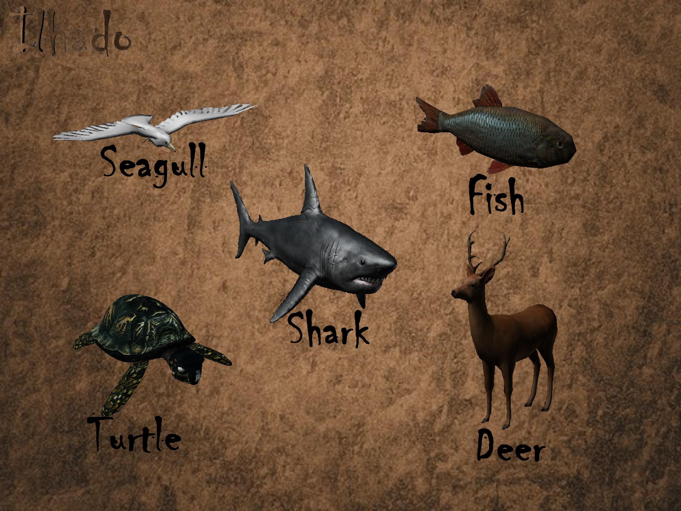 Alguns Animais Ingles