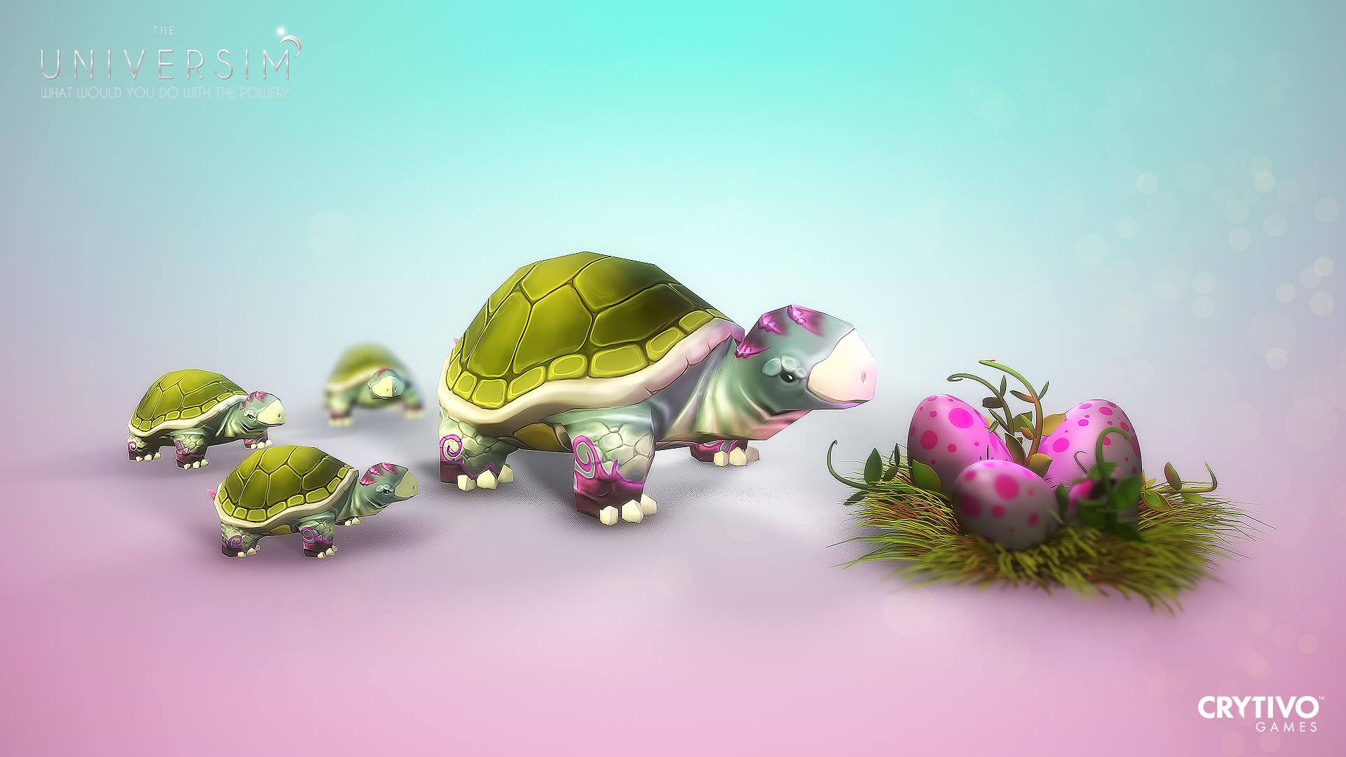 Turtle Rendering 4