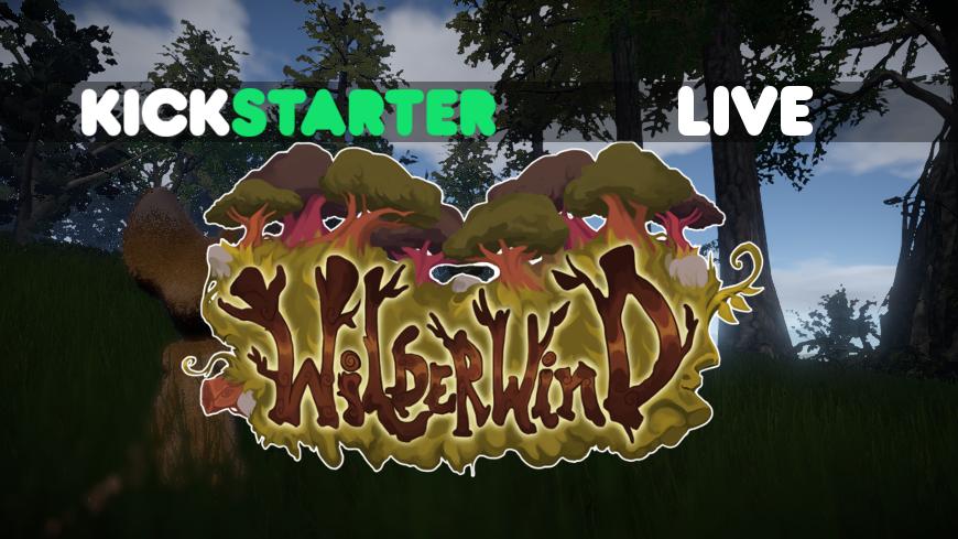 WW Kickstarter