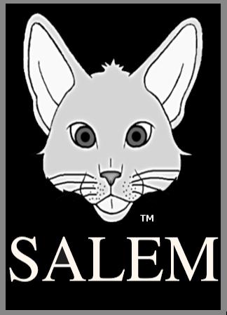 salem logo bg 1 2