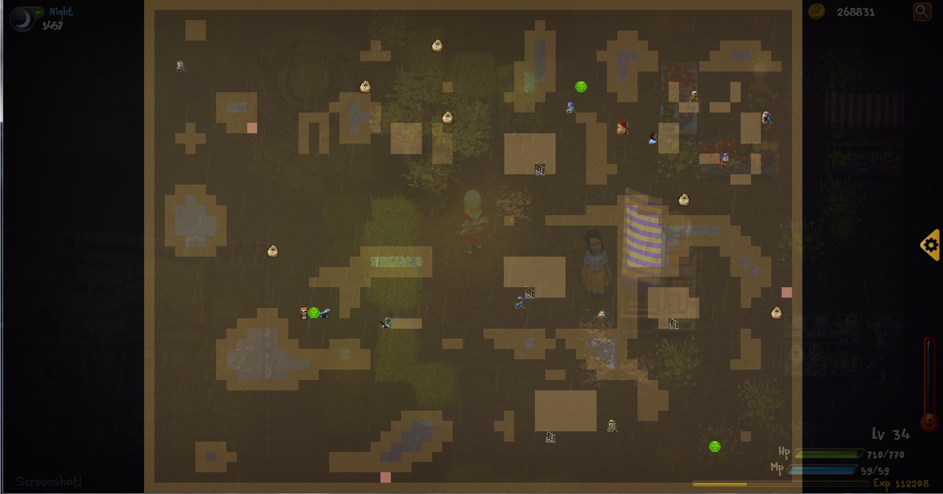 updated mini map max view