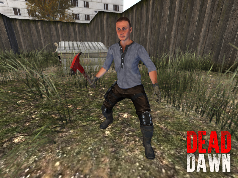 DeadDawn Survivor TeamMate 1