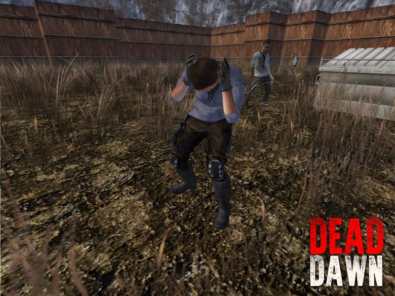 DeadDawn Survivor TeamMate 4