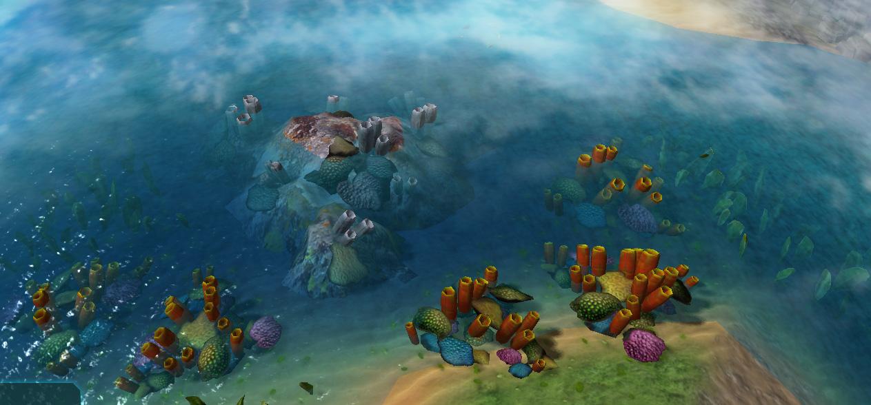 2016 08 11 corals