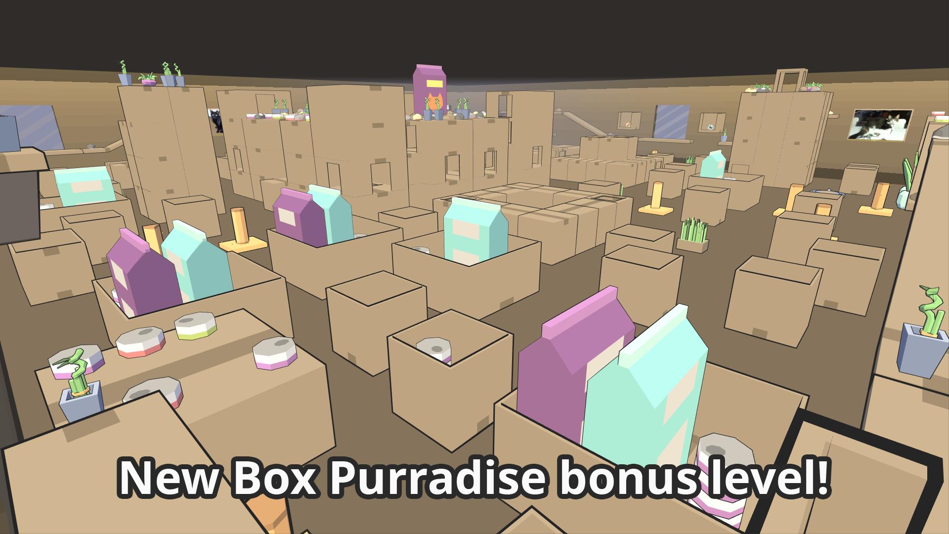 Box Purradise