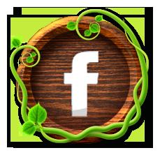 FacebookBut