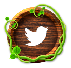 TwitterBut