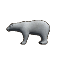 animal6