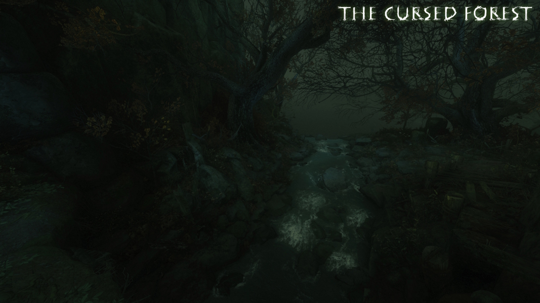 The Cursed Forest L5 crossroads