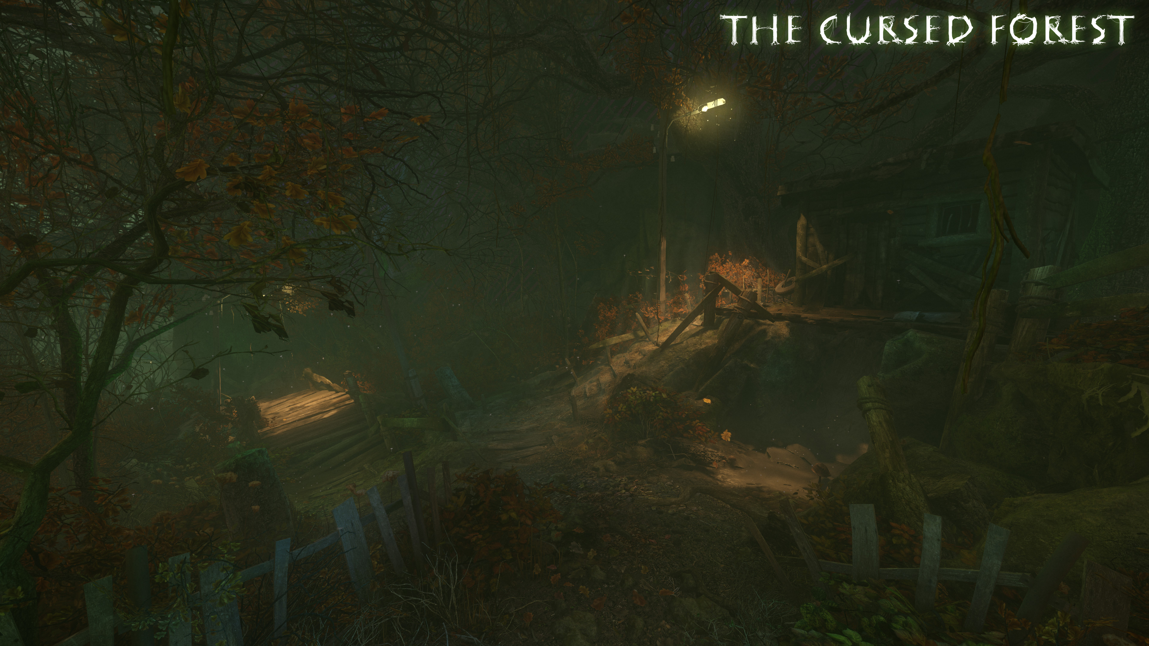 the cursed forest L3 1 L f