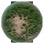 NR Grass