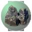 NR Rocks