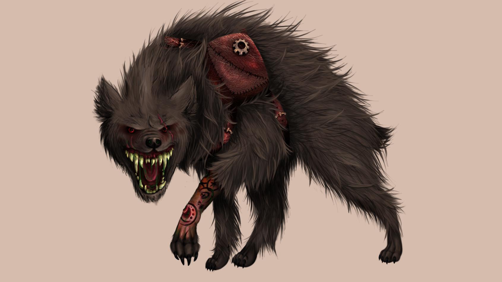 OMNIS dog