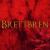 Brettbren1990