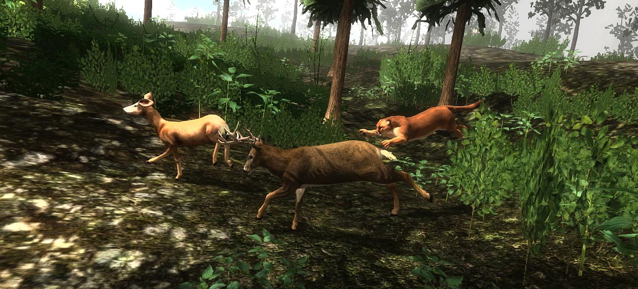 hunting deer2