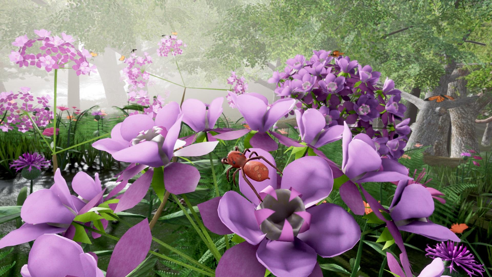 Milkweed Joy