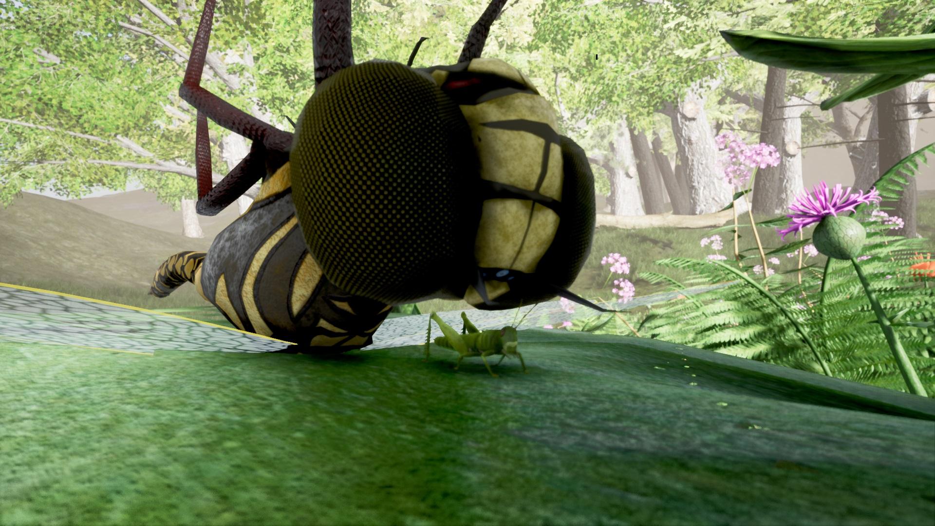 Tiny Grasshopper Under a Giant D