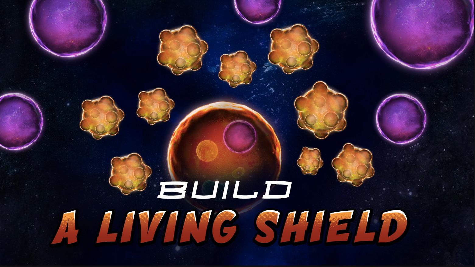 9 Shield