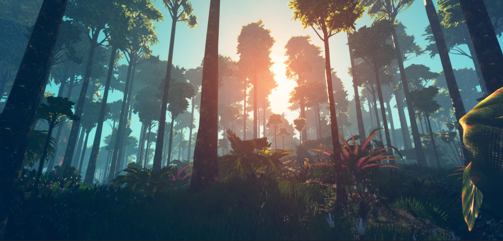 Look at the sun playing with the trees. Planet Nomads
