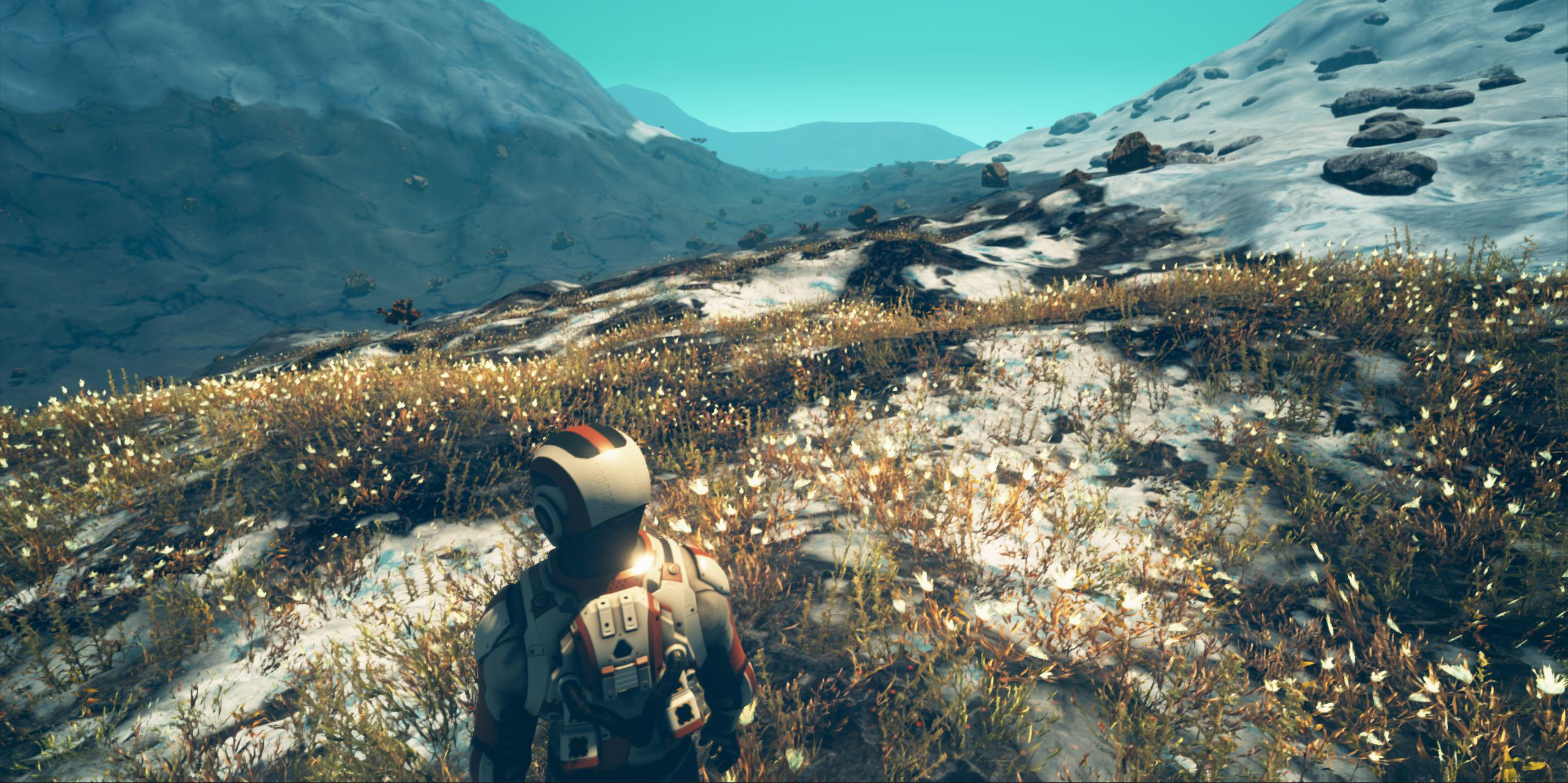 Tundra Meets the Arctic in Planet Nomads