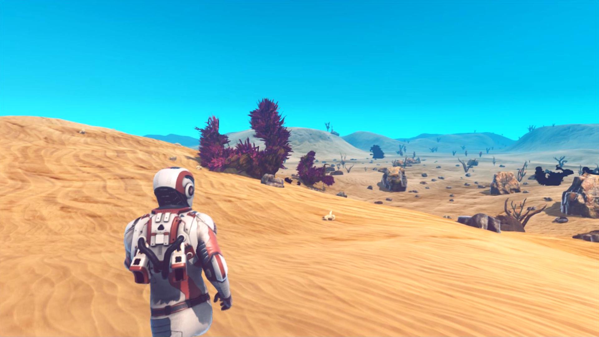 Roaming the Desert