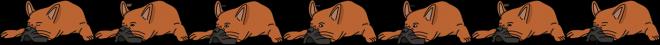 chien animation