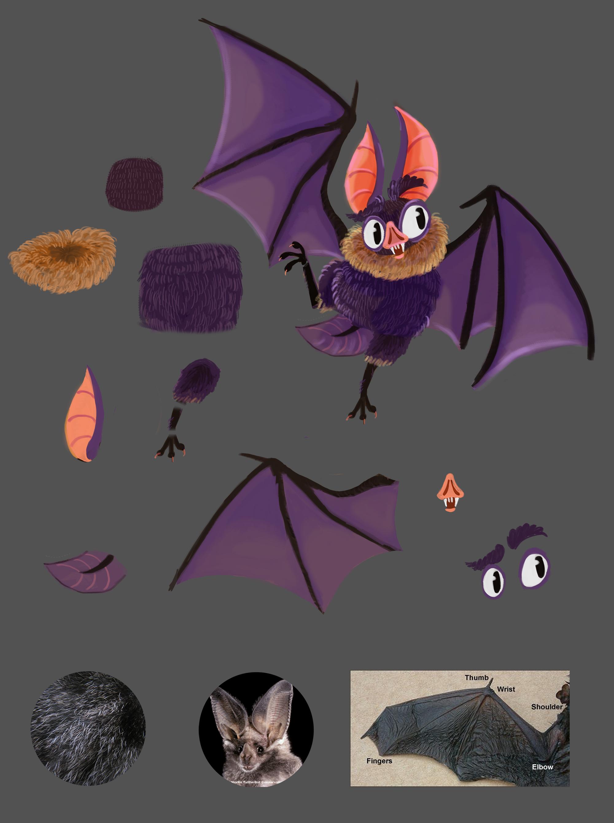 bat concept 02