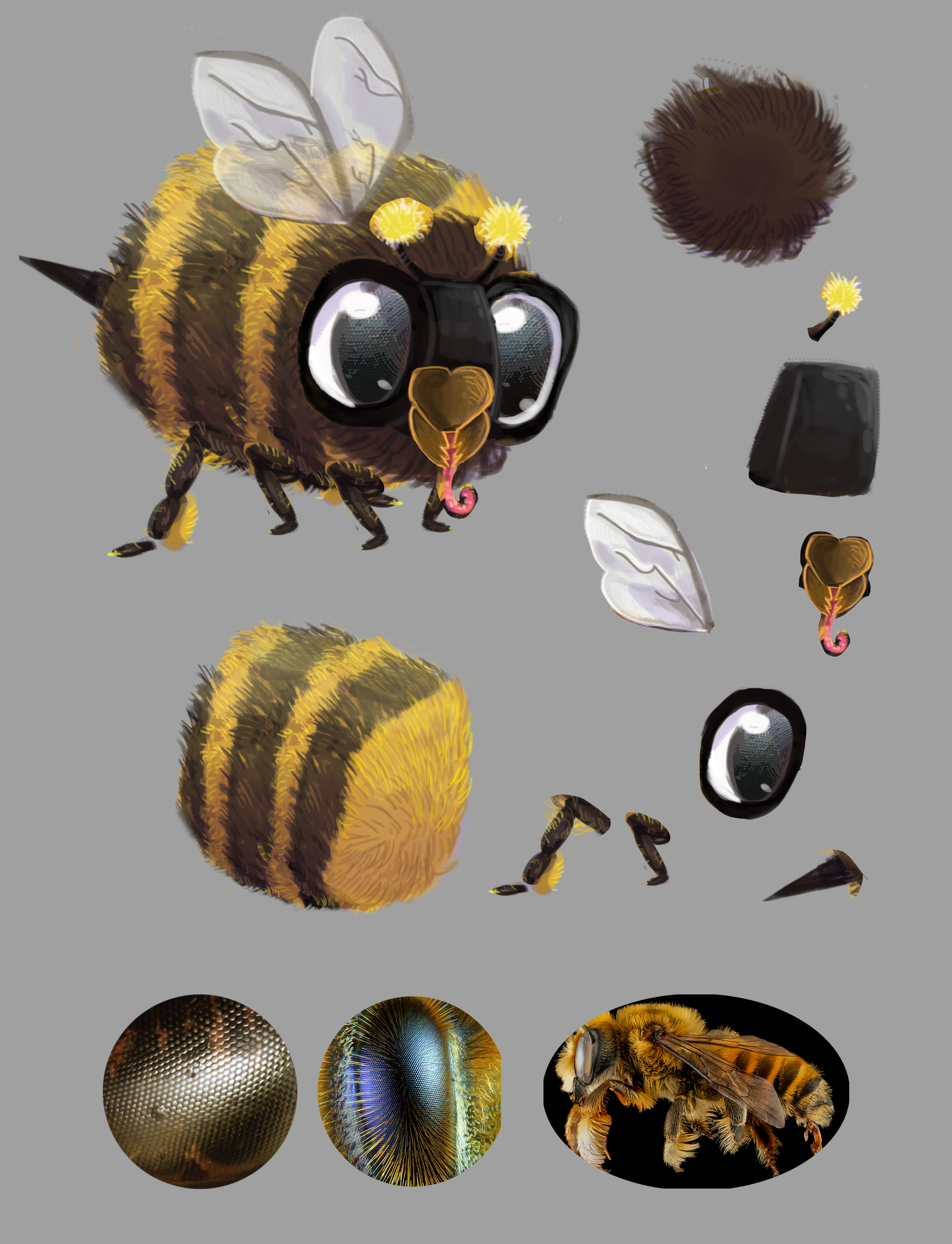 bee concept 2