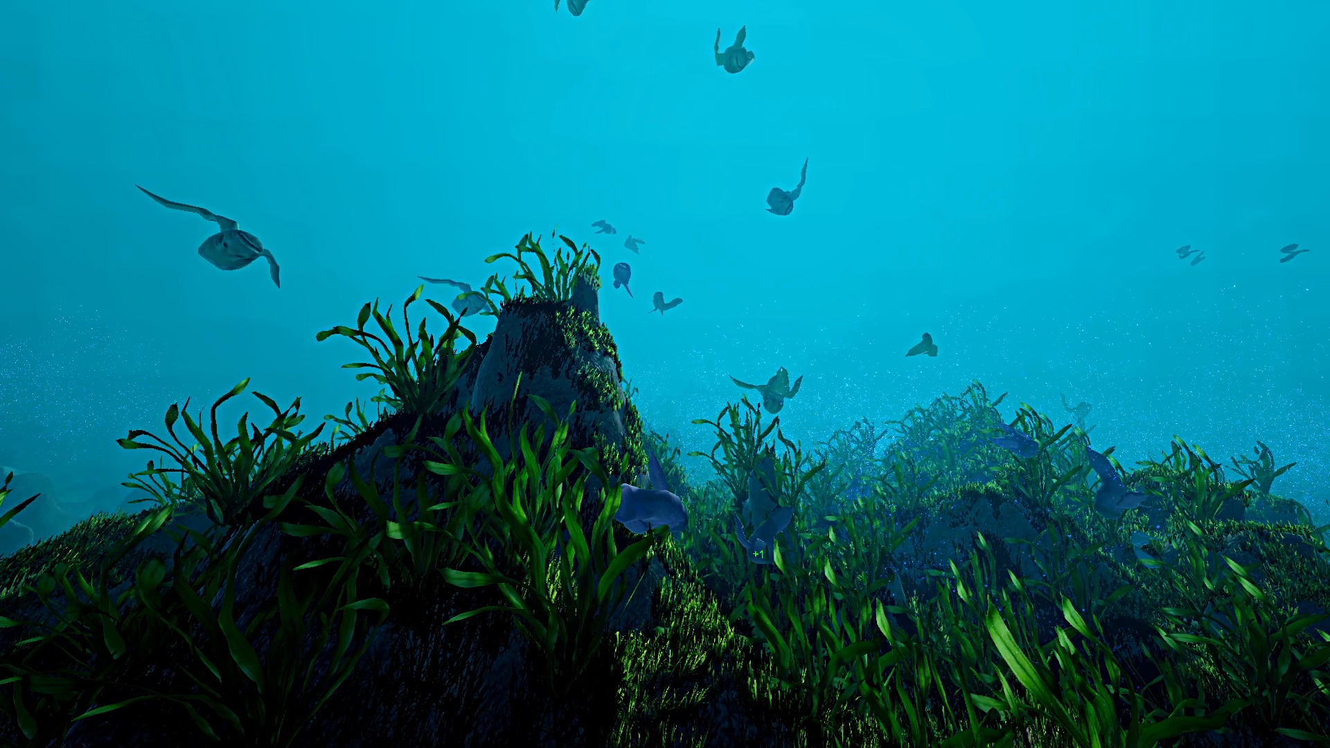 dblanecosystemscreenshot02