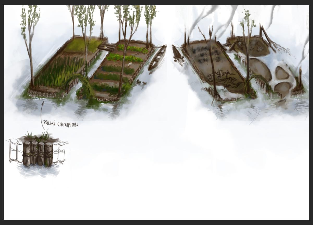 Aztecs' farms concept
