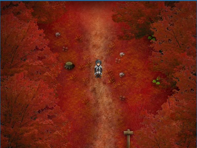 Old Autumn Fields