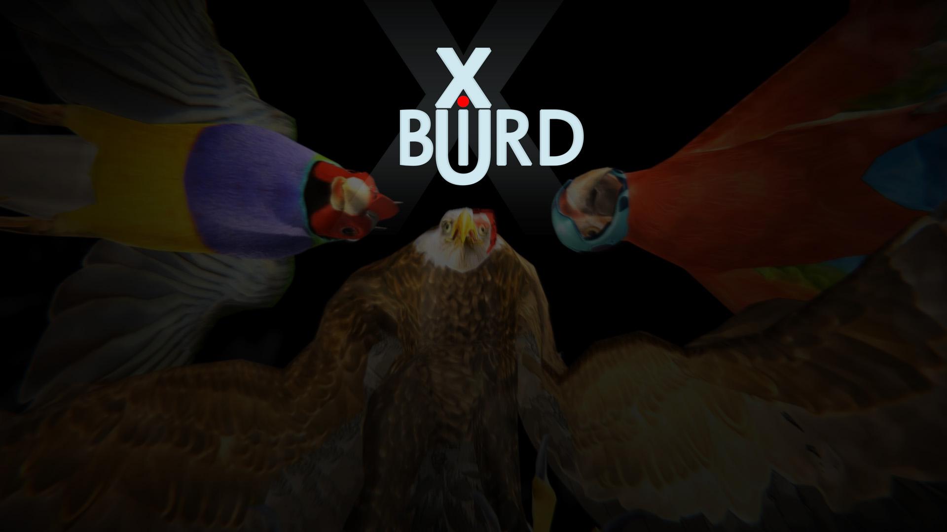 Xbird11