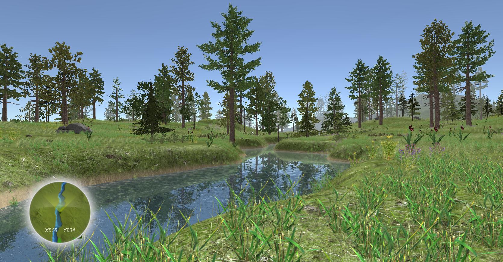 ForestSummer 1