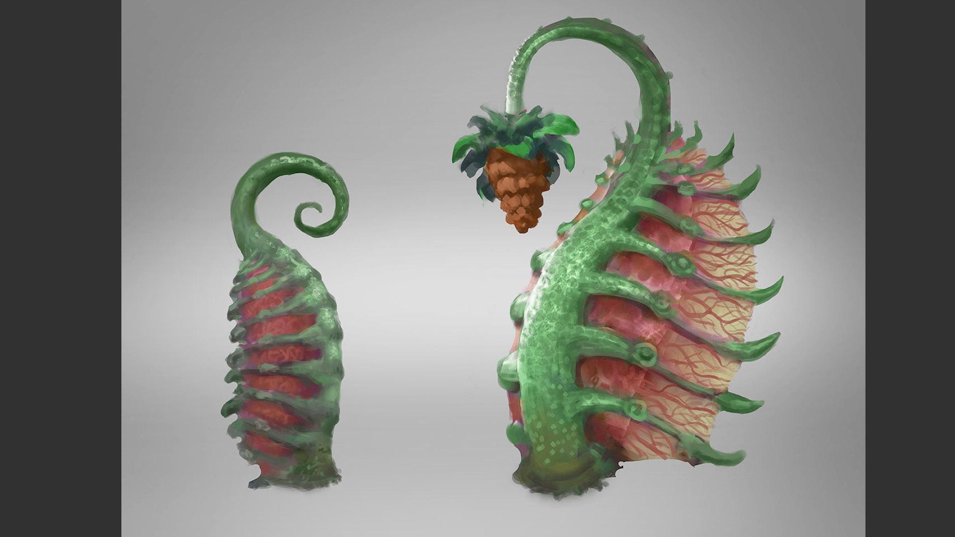 carnivorous plant 11