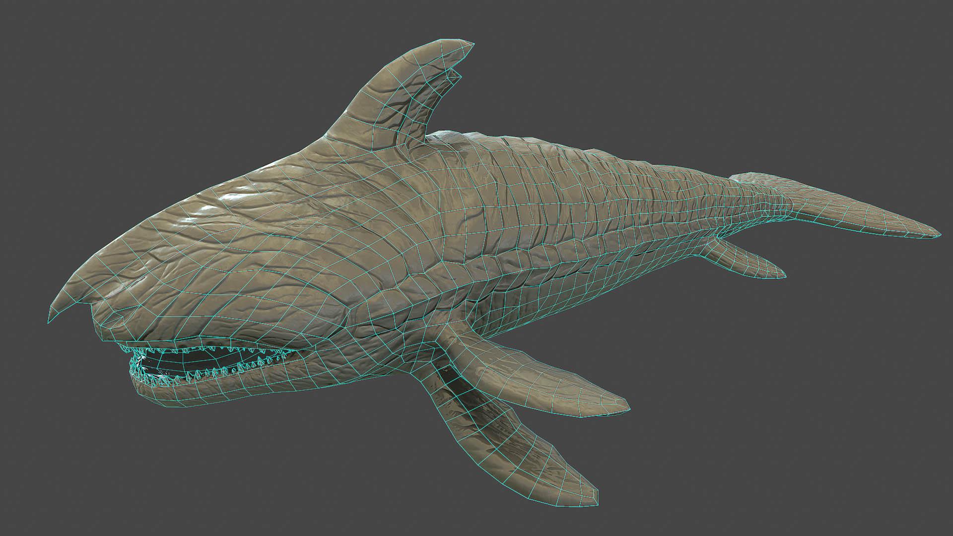 pantropy shark