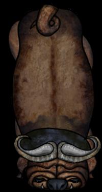 Buffalpug entity 000 Walking 000