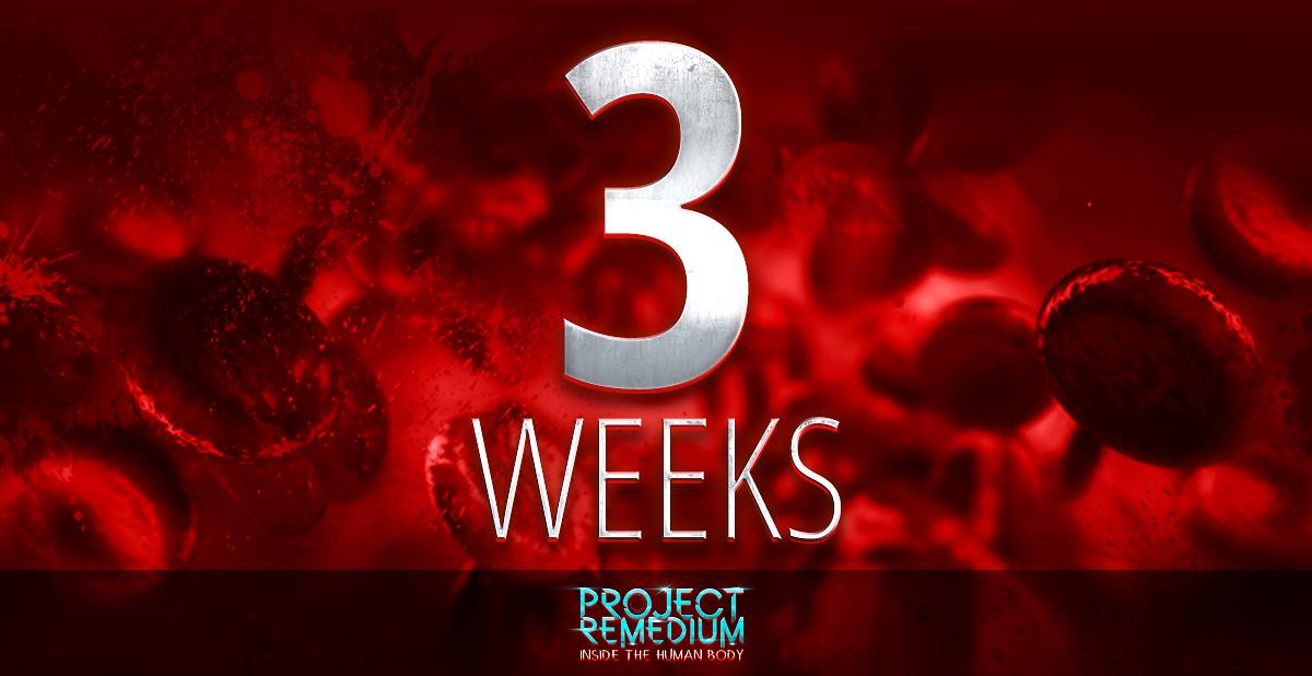 ProjectRemedium 3weeks
