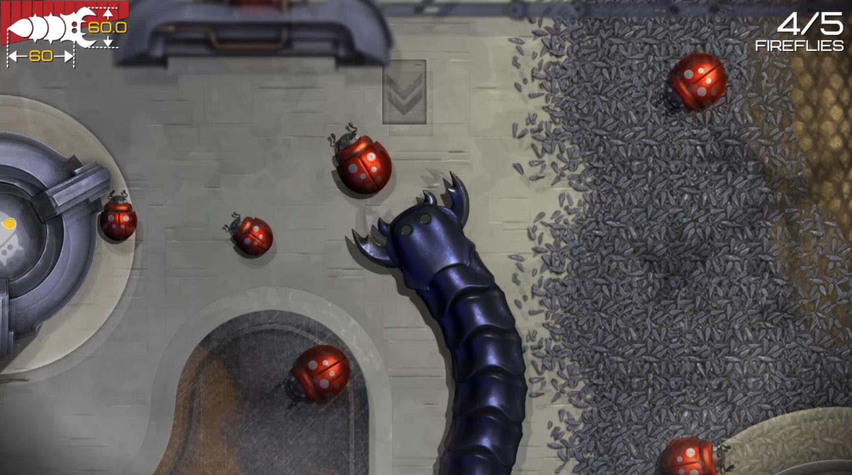 insatia bug