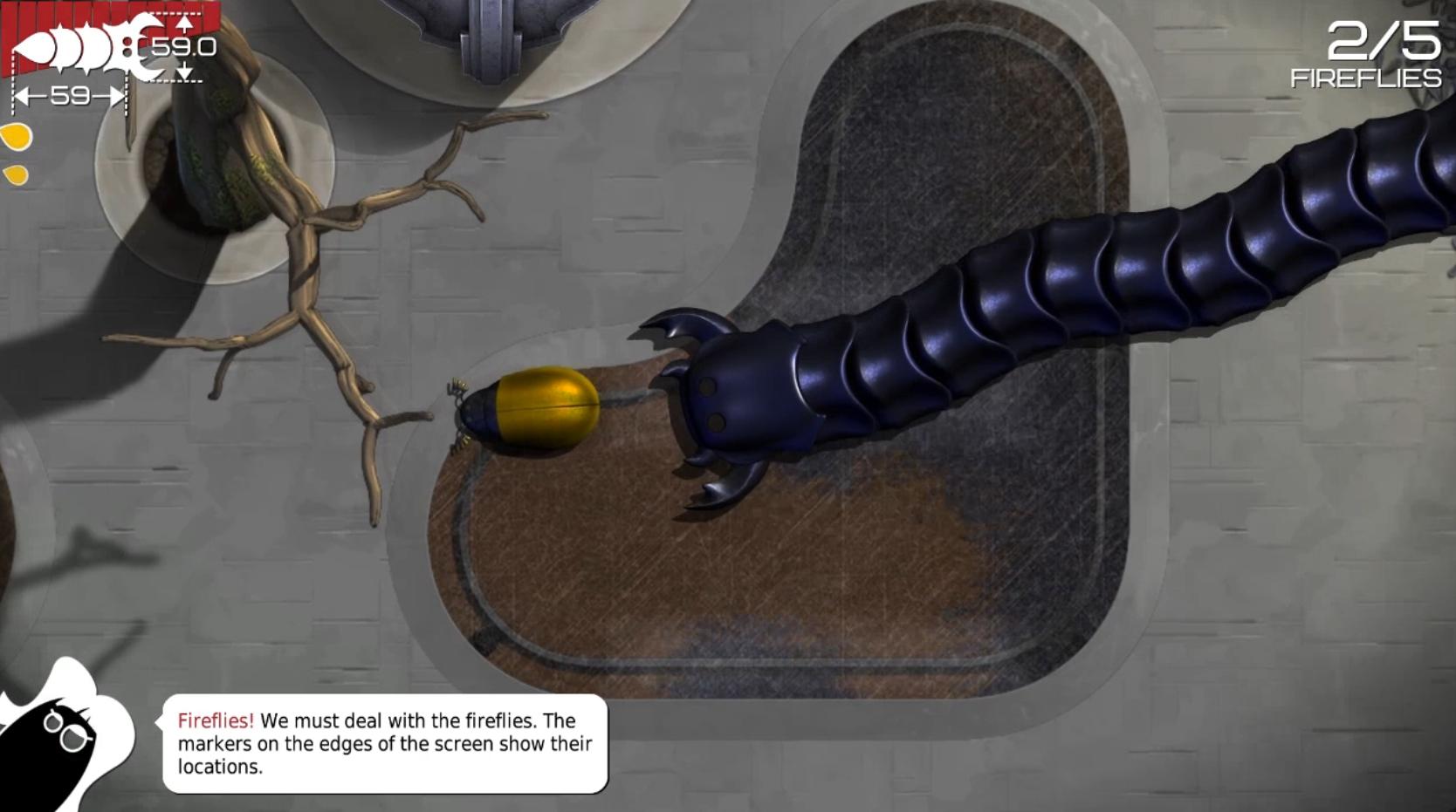 insatia bug 2