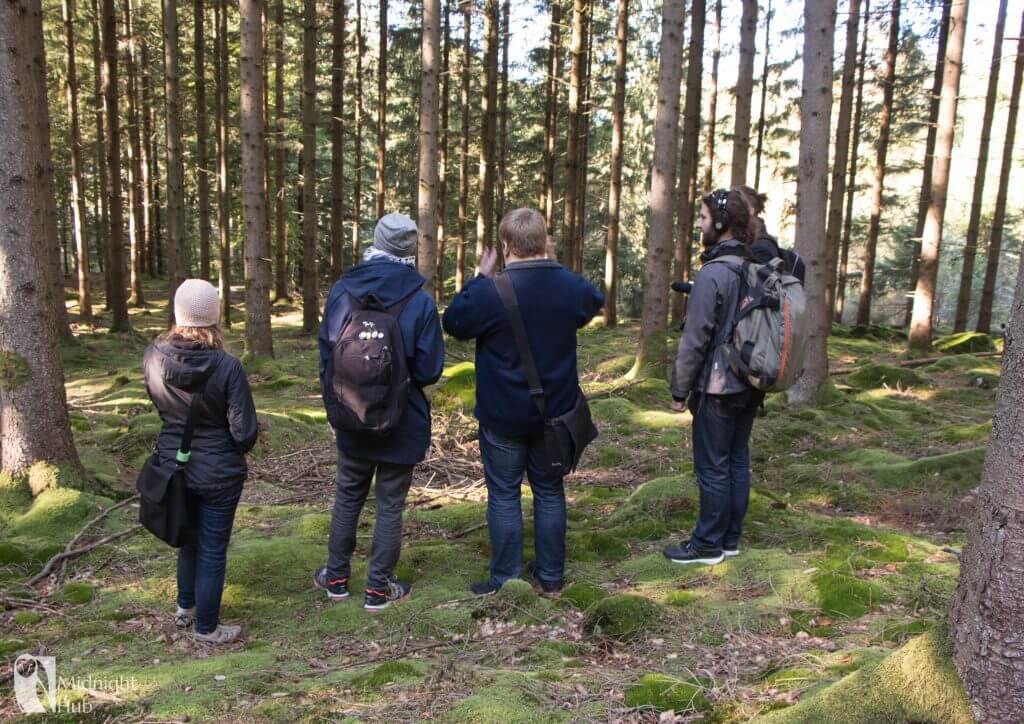 skog10 mh 1024x724 1