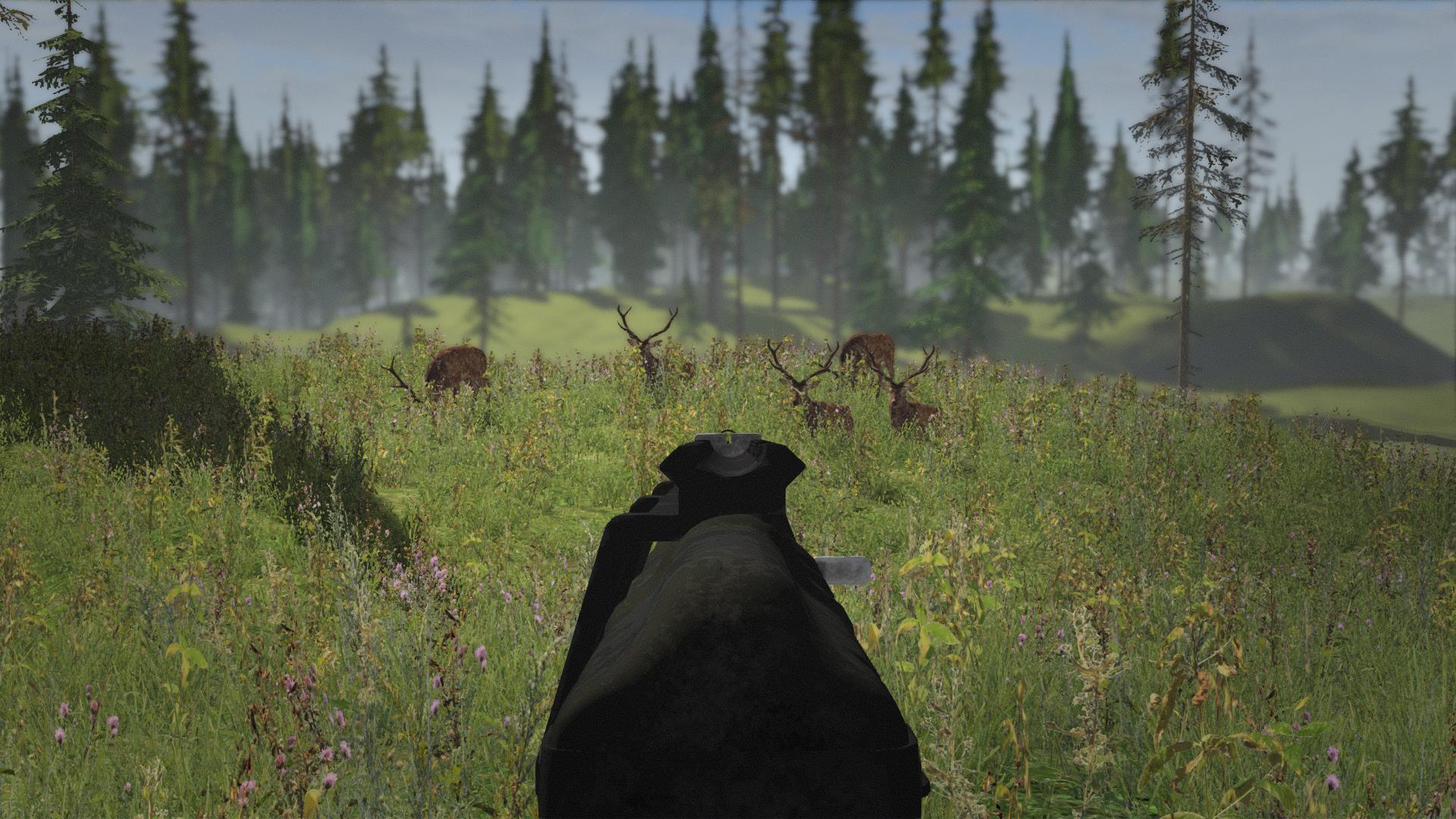 5 deers living in a herd