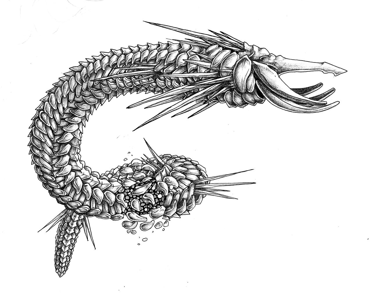 Alien Worm Concept