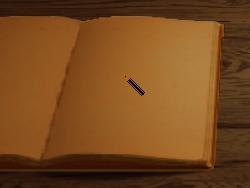 Survival Diary Videoblog 1 3
