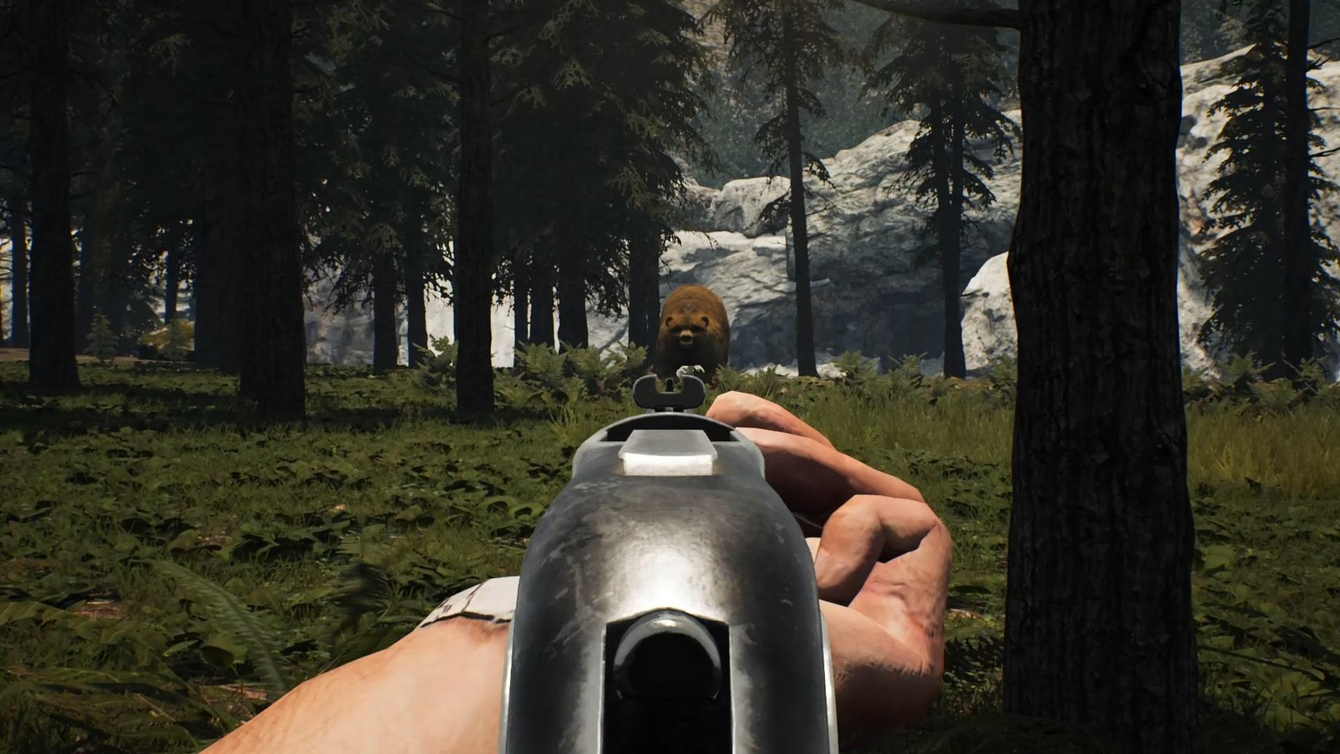 Hunt Bear