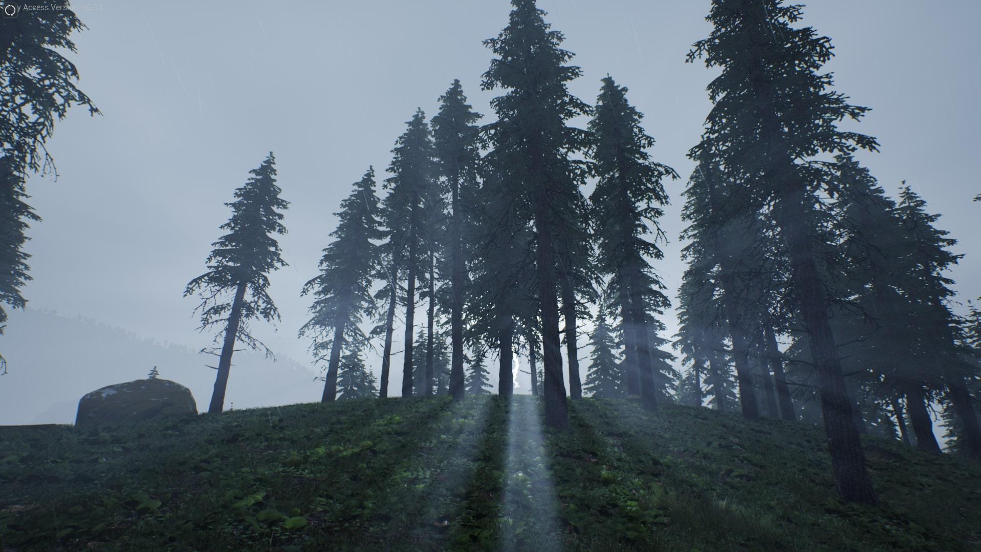 LightningForest