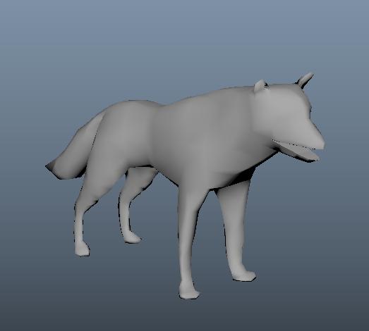 Wolf Model - Angus