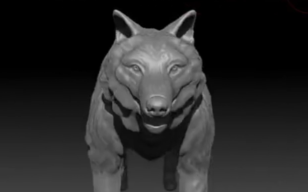 Wolf Front View - Stu